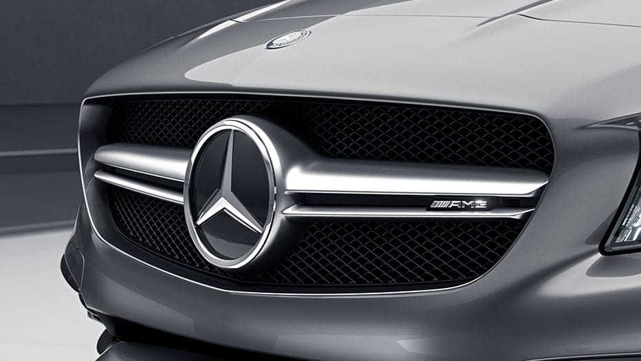 AMG double-crosswing grille