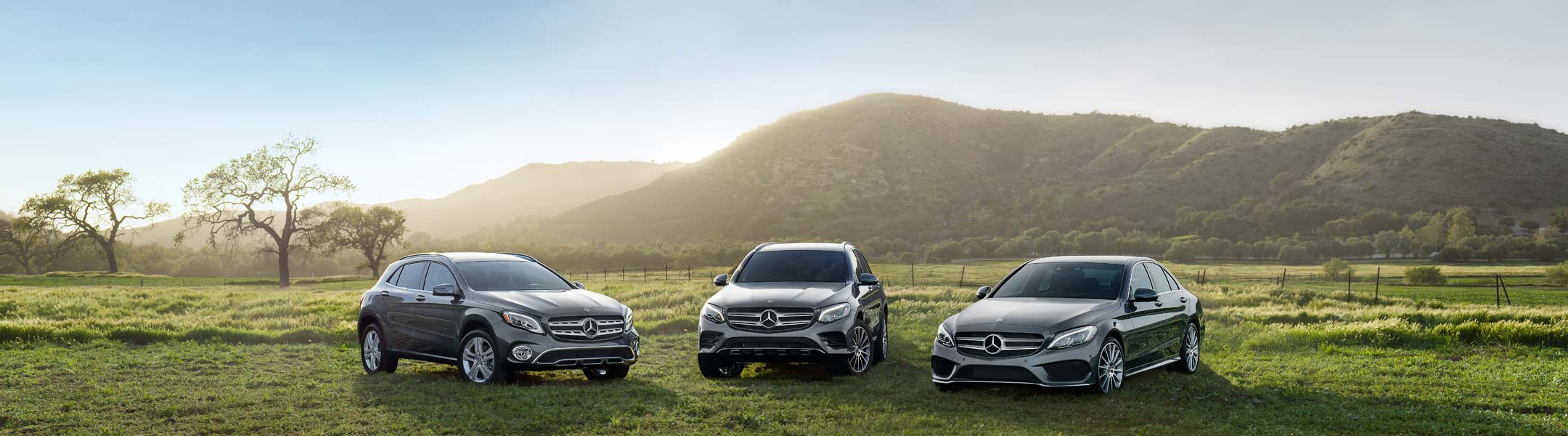 Three Mercedes-Benz vehicles are parked in a pasture on a summer's day.