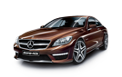 BROWN AMG CL65